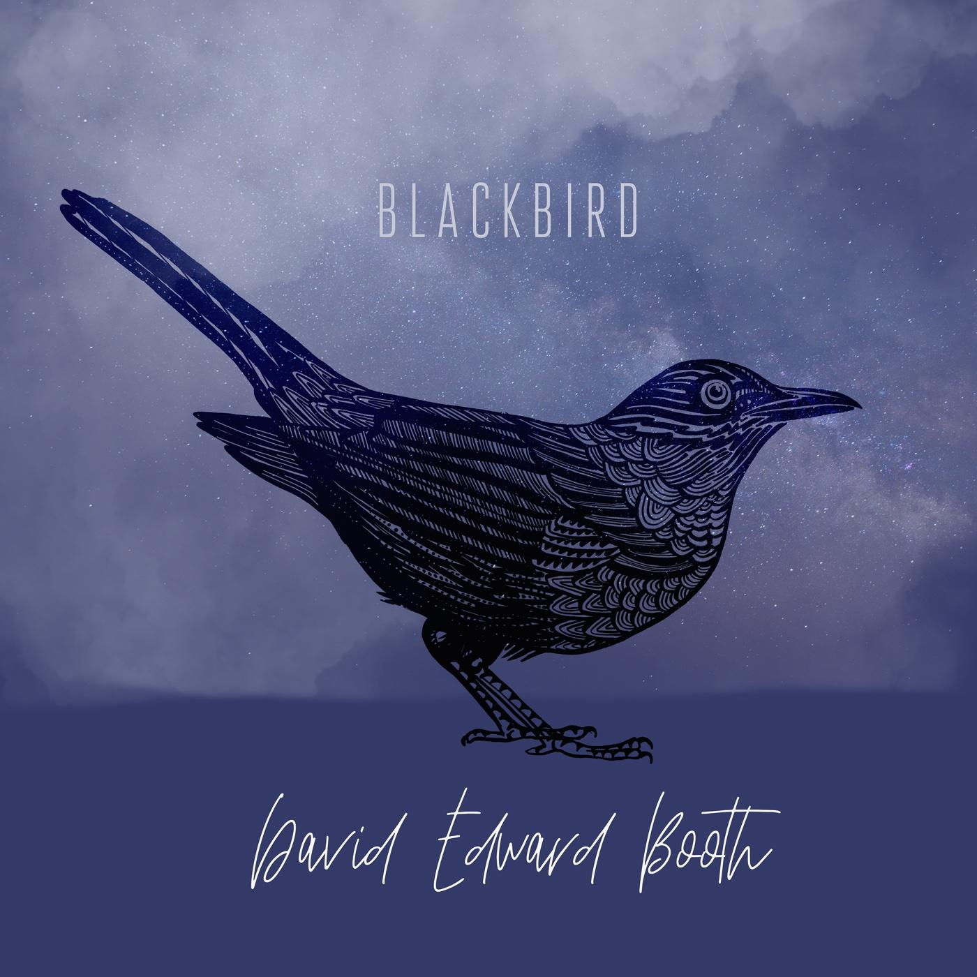 blackbird artwork for the song Blackbird by David Edward Booth